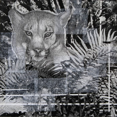Cougar in the Ferns — made from photocopies of my sketch of a cougar and some photos I took of ferns. I was going to glaze it with paints, but I liked it so much in black and white I left it.