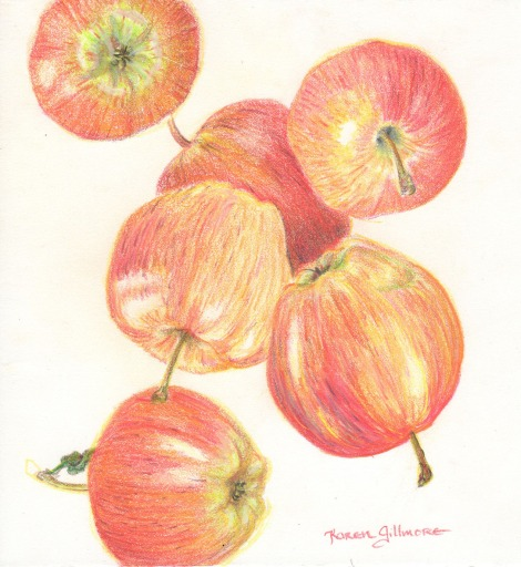 """Falling Apples"" — When I teach a coloured pencil workshop, I often go buy a bag of apples and hand one out to everyone. Apples are excellent subjects for learning how to build up colour from light to dark. After my demo, he whole class goes back to their tables and becomes very quiet for a while — silence is the sound of creativity! One class I actually had time to draw my apple several times on the same page."