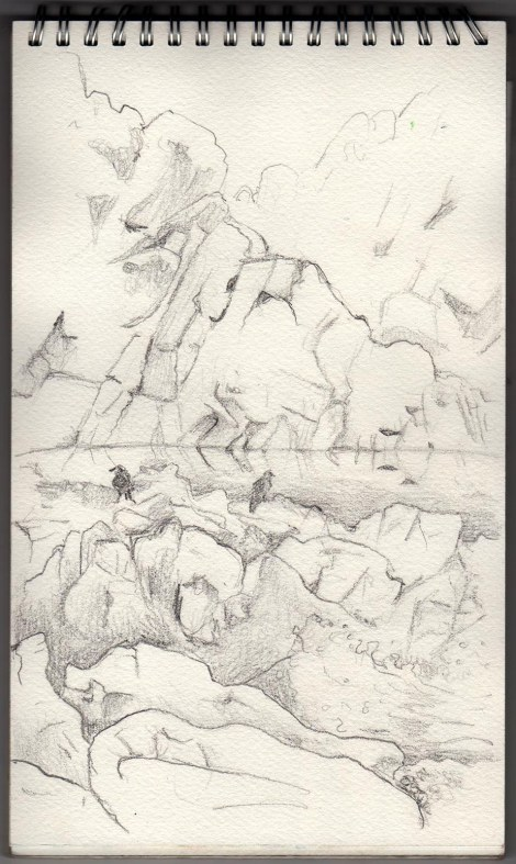 Rocks and Crows at Hot Springs Cove, BC — I was travelling VERY light here — only a graphite pencil , a sharpener, and my sketchbook. I knew we were going to have to hike for a few kilometres so I kept it minimal.