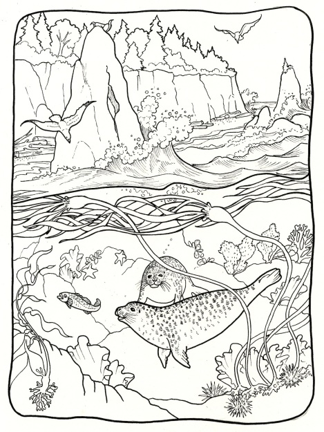 I loved doing this over-under picture showing some of the offshore sea life. And I love drawing rocks.