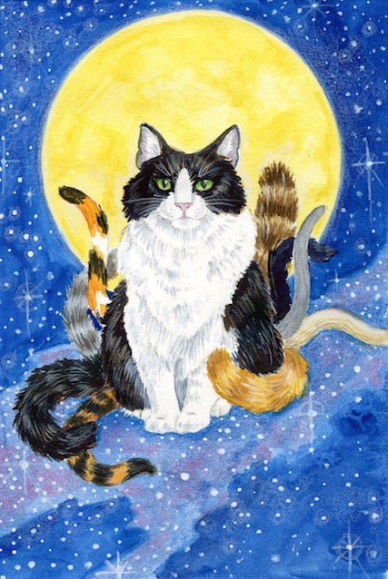 9 Tales O' Cats is a collection of short stories about — cats! (Bet you guessed that!) I used my own cat, the ever-photogenic Mak, as a model, and put tails of many colours on him to represent the different cats in the book. I had great fun perching him on the Milky Way.
