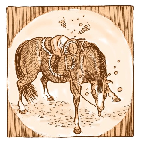 The young heroine of Horse Sense, another story from Telling Tales, expresses her frustration and wooziness with emanata. The horse is just woozy.
