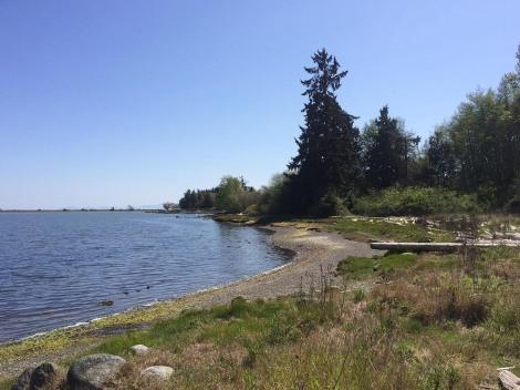 Lagoon Beach View