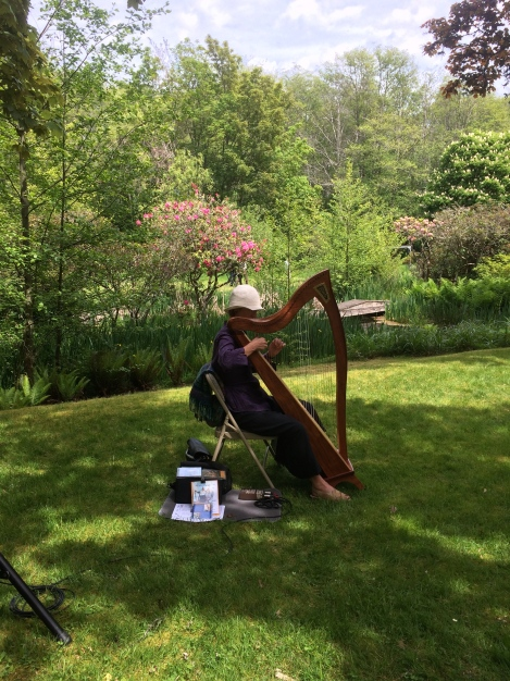 It was a pleasant surprise to find my friend Alison Vardy playing her harp just down the path from us!