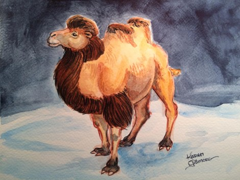 Bactrian Camel 2.JPG