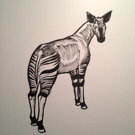 Okapi ink.jpg