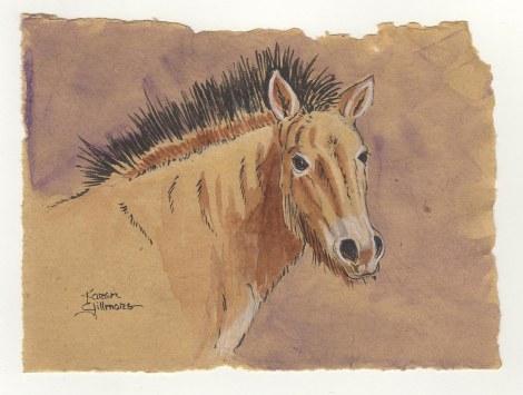 Zooly  Przewalski Horse.jpg