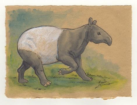 Zooly Tapir.jpg