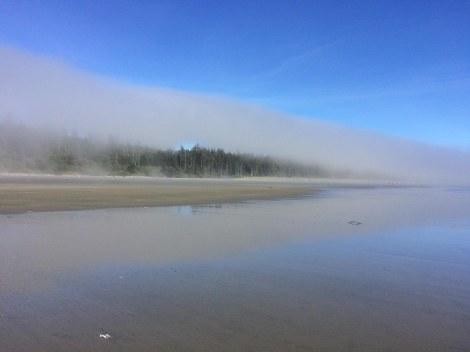 Combers fog.JPG