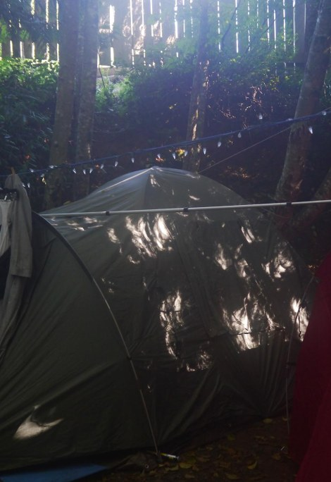 Mike's eclipse tent.jpg