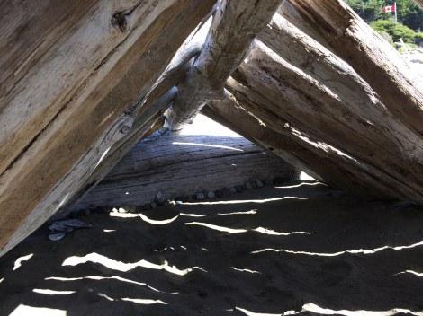 Wiki hut interior.JPG