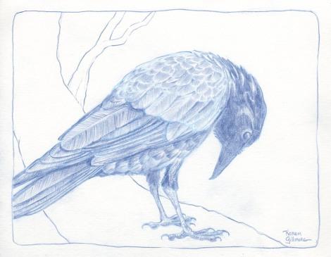 crow 1 sm