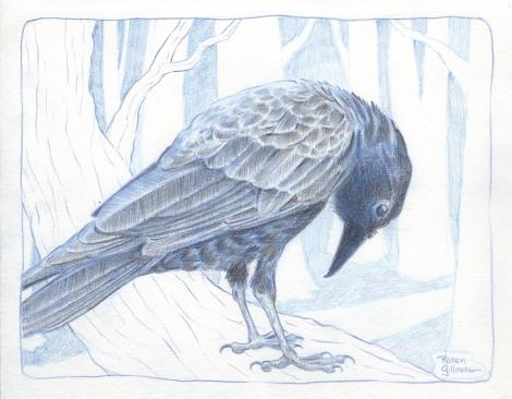 crow 2 sm