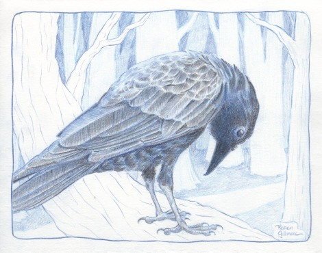 crow 3 sm