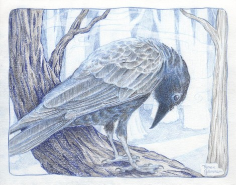 crow 5 sm