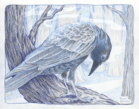 crow 6 sm