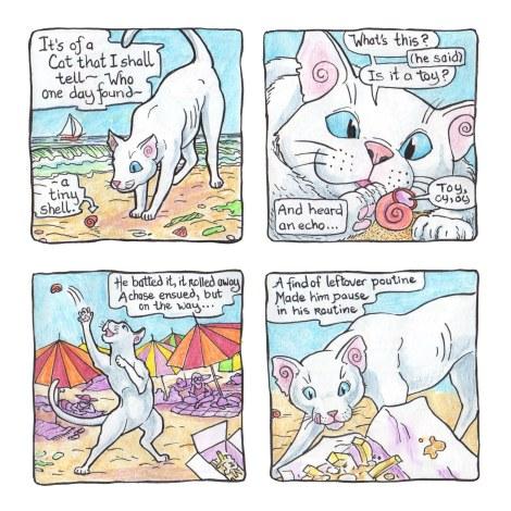 Cat on the Beach 1