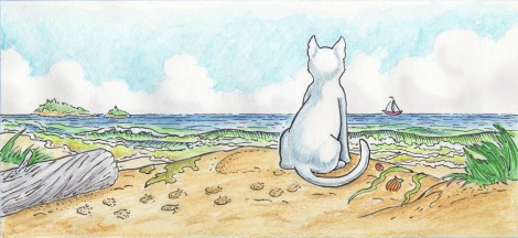 Cat on Beach cover image